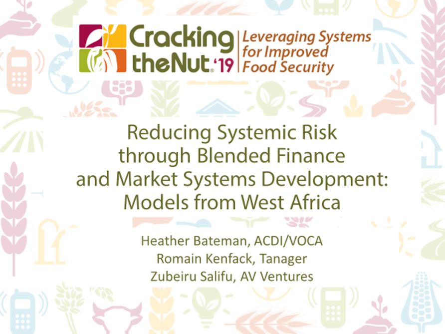 Session 1.5: Reducing Systemic Risk through Blended Finance and Market Systems Development: Models from West Africa